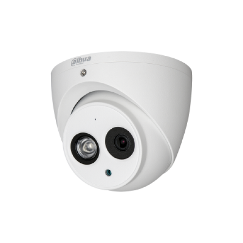 2MP IR Eyeball Network Camera